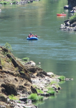 Rogue River Guided Rafting Trip